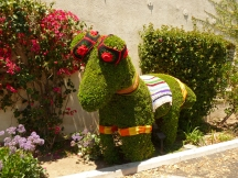 topiary horse