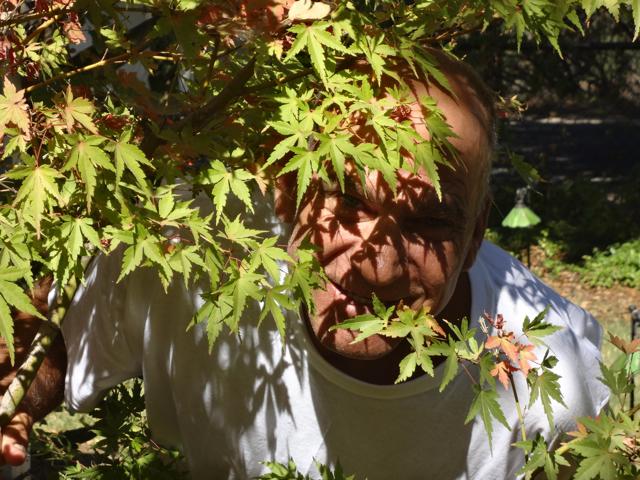 The Gardener Scot