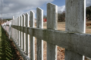 Buer Fence